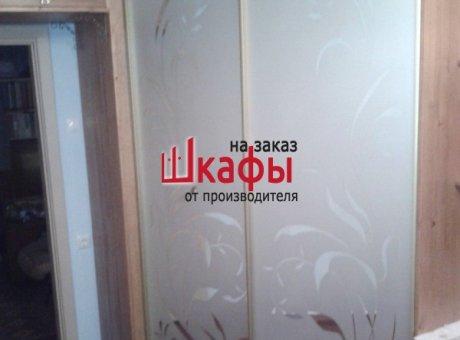 Дверь в кладовку стекло